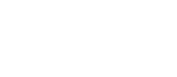 actio for road